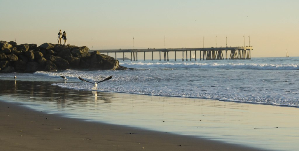 Stretch of beach at Venice, California. The fisherman's pier extends in the distance.